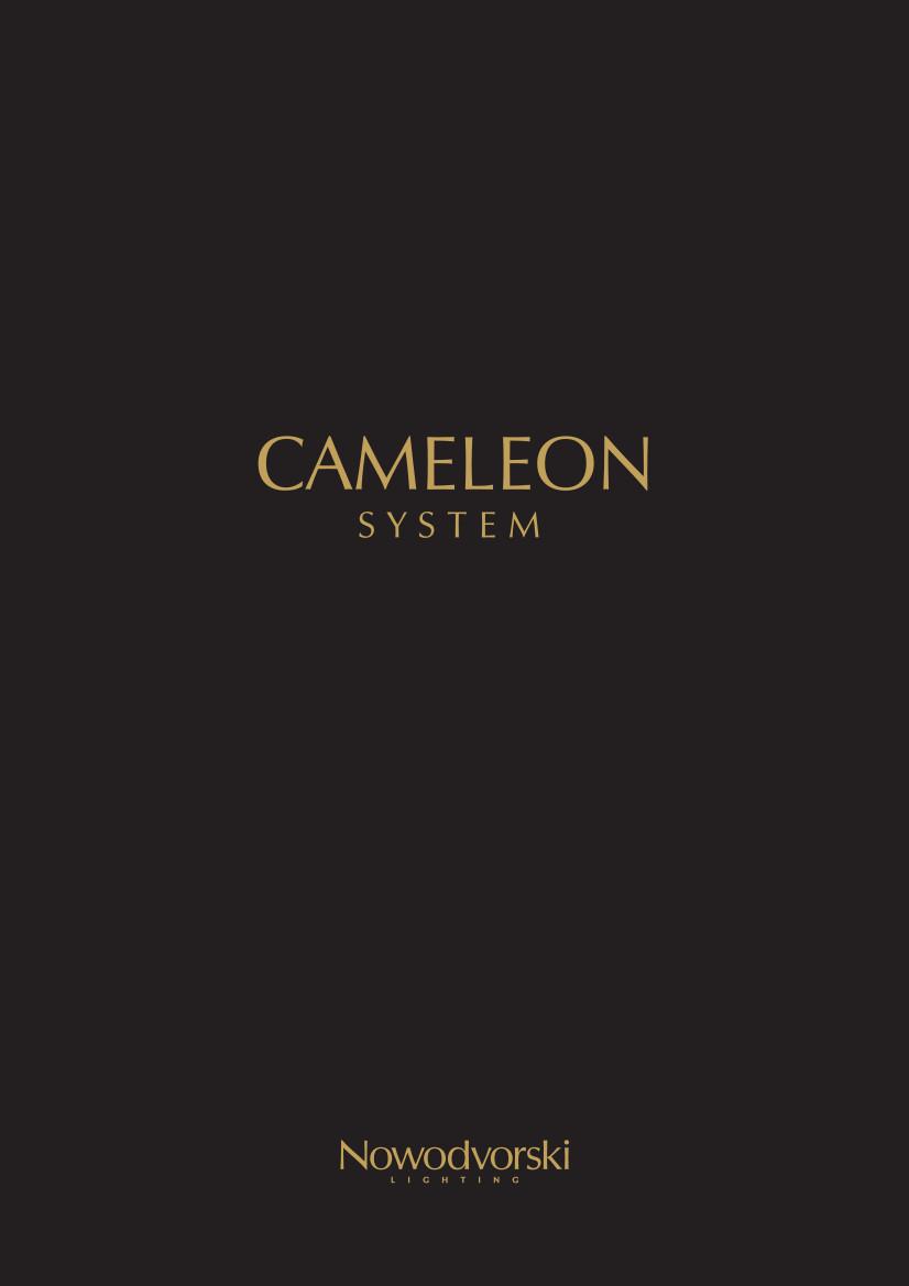 12-cameleon-dekoracyjne